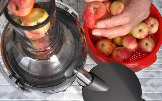 Соковыжималка для целых яблок
