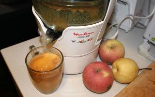 Сок из яблок через соковыжималку